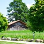© Augustiner-Vikariat Wien | Gästehaus | Garten | Erholung, Feste & Feiern | Foto: Heidi Kufner